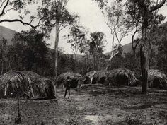 Aboriginal Camp - Aborginal Environments Research Centre site at The University of Queensland  The structures comprising it involve complex forms of intersecting domes. For example, the shelter on the left has an entrance porch made of a small dome attached to the main dome. The structure in the centre rear has a large internal space with at least four doorways, possibly for use by different co-wives in a polygynous marriage. (Memmott)