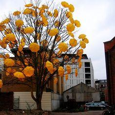 Intervenção Urbana do inglês Sam Spenser - Uma árvore de guarda-chuvas ;D
