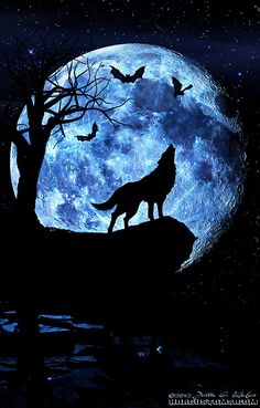 Wolf howling at the moon, composite art. | I really enjoy cr… | Flickr