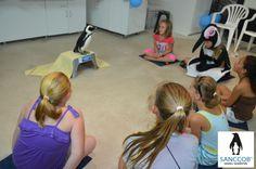 Penguin Birthday Party at SANCCOB