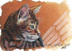 ACEO Original art animals cats animals pet portraits miniature drawing -SMcNeill #ebay #aceo #animals #cats