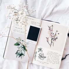 Pretty flowers for your bullet journal layout Bullet Art, Bullet Journal Spread, Bullet Journal Layout, My Journal, Bullet Journal Inspiration, Journal Pages, Journal Ideas, Bullet Journals, Scrapbook Journal