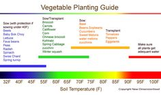 soil planting temperature for plants |  c. New Dimension Seed
