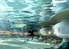 Qatar Underwater Hotel | ... creating an overall unique of the Underwater experience resort hotel