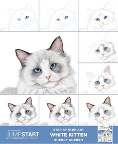 Jumpstart Level White Kitten-Drawing your first cat in colored pencil can feel intimating at first, but with Sherry Goeben's approachable techniques, you'll be creating soft, white fur, embossed whiskers and crystal blue cat eyes in no time. Pencil Drawing Tutorials, Pencil Art Drawings, Easy Drawings, Pencil Sketching, Horse Drawings, Cat Eye Tutorial, Cartoon Tutorial, Cat Drawing Tutorial, Kitten Drawing