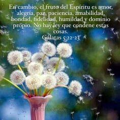 «En cambio, el Espíritu produce amor, alegría, paz, paciencia, amabilidad, bondad, fidelidad, humildad y dominio propio. No existe ninguna ley en contra de esas cosas.» Gálatas 5:22-23