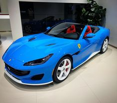 Ferrari, Maserati, Bugatti, Lamborghini Cars, Porsche, Audi, Bmw, Royce, Jaguar