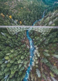 northwezt:  Vance Creek Bridge (Nov. 4, 2015)