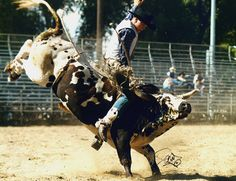 It doesn't get more rodeo than this!