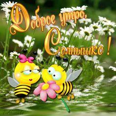 Доброе утро, Солнышко! (пчелки с ромашкой) - анимационные картинки и gif открытки