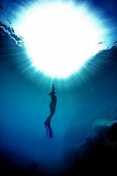 Freediver...spectacular!!!