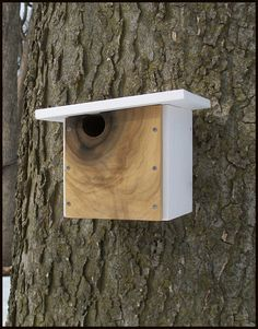 Modern Wood Birdhouse / Nest Box / Poplar Wood / One-of-a-Kind $58.00