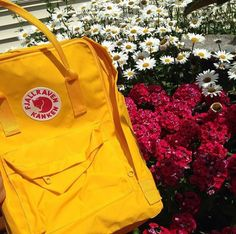Fox Fan Takeover Contest entry from @matthew.too.turnt! Nice summer shot! #fjallraven  #bags