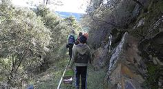 http://misierradegata.com/actividades/excursiones-para-escolares/ Rutas para escolares Sierra de Gata Caceres