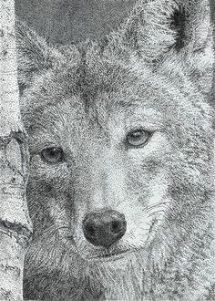 Wolf in pointillism by Rotavigan.deviantart.com