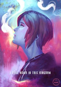 Tribute to the new Life Is Strange: Before The Storm