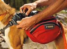"""This is the most awesome dog backpack; our yellow lab """"helps the family' by carrying her own water, food, shoes, and food dishes. Ruffwear Palisades pack two collapsable water bottles (placement keeps pet body cool), removable saddle bags and load compression system."""
