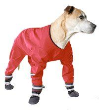 Muttluks DJ18R 4-Legged Dog Jog Rain Suit - Size 18, Red ** Don't get left behind, see this great  product (This is an amazon affiliate link. I may earn commission from it)