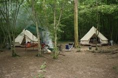 Sussex Campsite with Bell Tents in the Wild Boar Wood