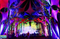 The Electric Forest Lineup Is Here - http://blog.lessthan3.com/2015/02/electric-forest-lineup/ electric forest, insomniac Event, News