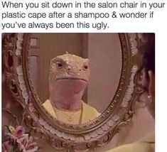 In fact the gallery below of dark humor memes will surely get you saying WTF or even Oh Damn! Hair Meme, Hair Humor, Ugly Meme, Done Meme, Ugly Hair, Meme Caption, Done Quotes, Dark Humour Memes, Salon Chairs