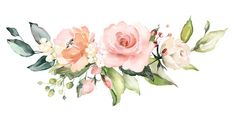 watercolor flowers floral illustration Leaf and buds Botanic composition for wedding or greeting card branch of flowers - abstraction roses Illustration Blume, Watercolor Illustration, Arte Floral, Watercolor Flowers, Watercolor Paintings, Watercolor Wedding, Garden Wedding Decorations, Flower Backgrounds, Floral Illustrations