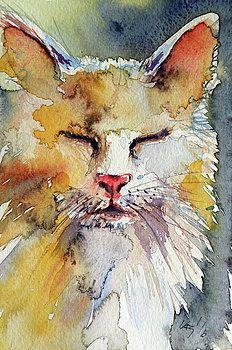 Sleeping cat by Kovacs Anna Brigitta