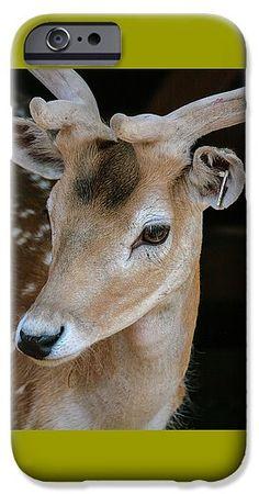 #AnnaMatveeva #photograph #FineArtAmerica #ArtHome #homedecor #Fantastically #Beautiful #ArtHome #Animals #Handsome #Deer #PhoneCase #Iphone