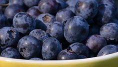 8 Delicious Summer Foods That Are Good For You, Too