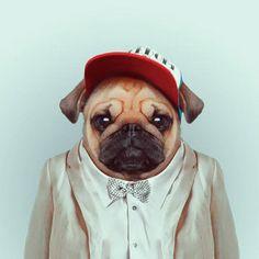 Divertidas fotografías de moda protagonizadas por diferentes animales