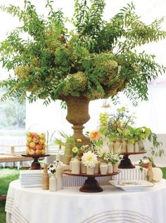 Is for urns on pinterest garden urns pumpkin topiary and topiaries