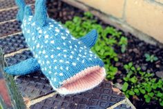 How adorably cute is this whale shark...too bad im not to keen on patterns or knitting in more than one color in one piece