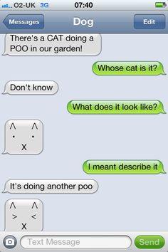 SMS amusement