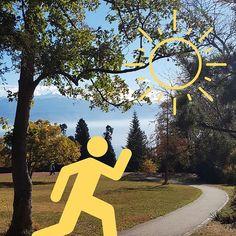 Loaded up on Vitamin D during my lunch break (1 dose = 10 minutes in the sun face and forearms)  Jai fait le plein de vitamine D pendant ma pause de midi (1 dose = 10 minutes au soleil visage et avant-bras découverts)  #vitaminD #vitamineD #soleil #sun #healthhacks #conseilsante #survivingwinter #survivreenhiver #sunnyday #mylunchbreak #mapausedejeuner #wonderfulfall #automne #november1st #happymoment #happiness #heureuse Jai, Health Tips, Happiness, Hacks, Instagram, Vitamin E, Fall Season, Face, Bonheur