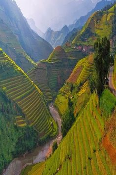 You could get lost in the living, breathing folds of green - Mu Cang Chai , Vietnam