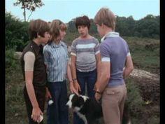 The Famous Five / Fünf Freunde von Enid Blyton. Die berühmten Fünf aus der 70er Jahre Serie: Julian, Dick und Anne, George und Ti-hi-mmy der Hu---uuu-uund ;)