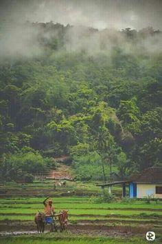 Konkan India