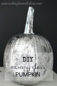 DIY Mercury Glass Pu
