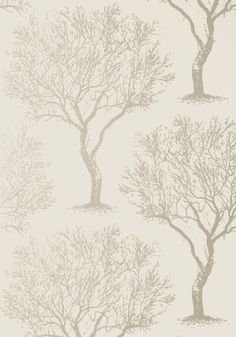 Thibaut - Anna French - AT6005   Pattern WINFELL FOREST   Wallpaper  Collection Seraphina  Colorway Neutral