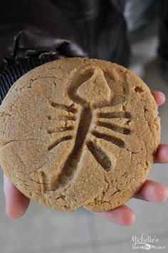 Easy Peanut Butter Fossil Cookies Recipe - 3 ingredients and a few plastic insects transform ordinary cookies into fossil cookies, perfect for an Indiana Jones or Halloween party! Dinosaur Birthday Party, 6th Birthday Parties, 8th Birthday, Birthday Ideas, Fall Birthday, Food Themes, Party Themes, Party Ideas, Food Decorations