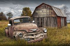 Rusted Chevy Pickup Truck In A Rural Landscape By A Mail Pouch Tobacco Barn by Randall Nyhof Pick Up, Ford Classic Cars, Classic Trucks, Chevy Classic, Flying Geese, Barn Pictures, Rustic Pictures, Chevy Pickup Trucks, Old Chevy Pickups