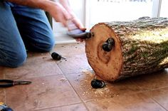 Add caster wheels to the bottom of a tree trunk stump and you've got quick outdoor seating and side tables