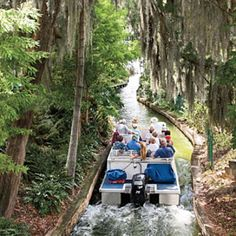 Budget Vacation: Orlando Beyond Disney - Southern Living