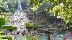 Jojogan wonder hill dan jojogan waterfall           J ojogan dalam bahasa setempat berarti air terj...