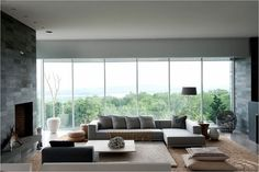 that window  living room