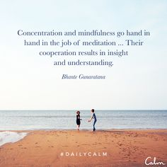 Concentration and mindfulness go hand in hand in the job of meditation... Their cooperation results in insight and understanding. —Bhante Gunaratana