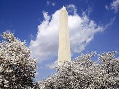 Learn about landmarks in Washington, D.C. through this slideshow featuring some of the capital city's most notable sites.