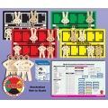 The DMS-05844 EMT3® Basic Tabletop Training Essentials Kit is designed to simulate a disaster response utilizing table top sized mats enabling the instructor to present the scope of the response and impart understanding prior to an actual drill or event.