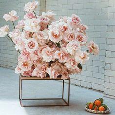 Simone Gnoch Fjura Fjura for Photo - is-sit tiegħi Flower Decorations, Wedding Decorations, Floral Wedding, Wedding Flowers, D Flowers, Modern Flower Arrangements, Pink Orchids, Floral Design, Floral Wreath