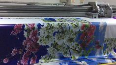 Trakya'nın lider Gergi tavan üreticisi Trakya Gergi Tavan çorlu gergi tavan Çerkezköy gergi tavan saray gergi tavan silivri gergi tavan  İletişim Bilgilerimiz  0282 726 02 00 0546 279 51 73 0532 770 51 73 www.trakyagergitavan.com www.trakyagergitavan.net trakyagergitavan@hotmail.com trakyagergitavan@gmail.com